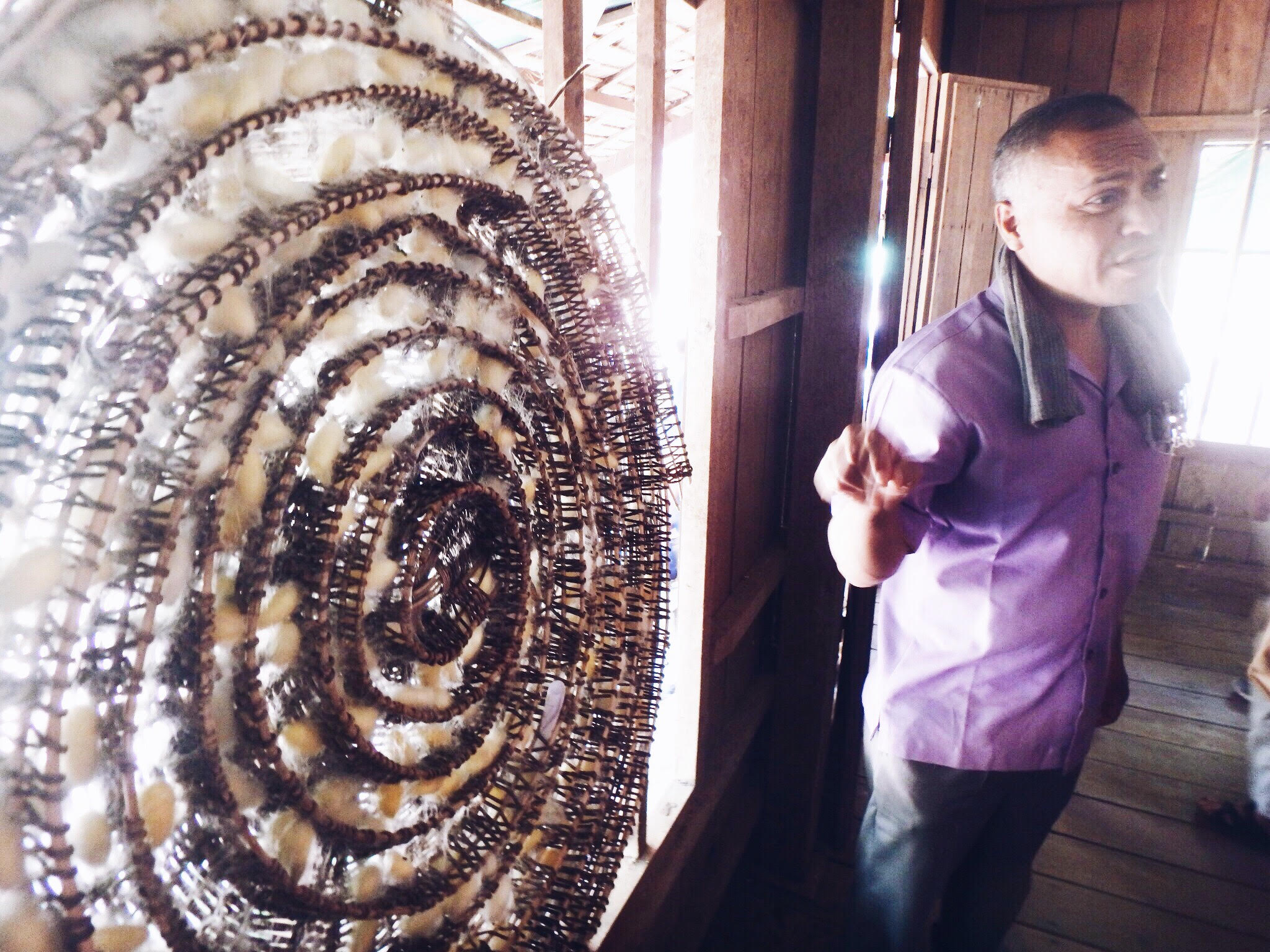 This is a wicker basket that the silk cocoons are placed to dry on.