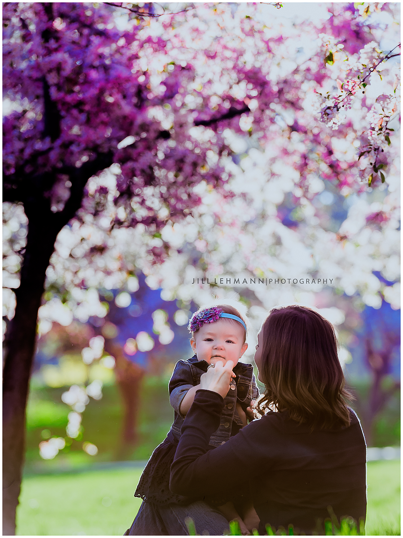 Baby / Child / Family Photographer in Des Moines, IA