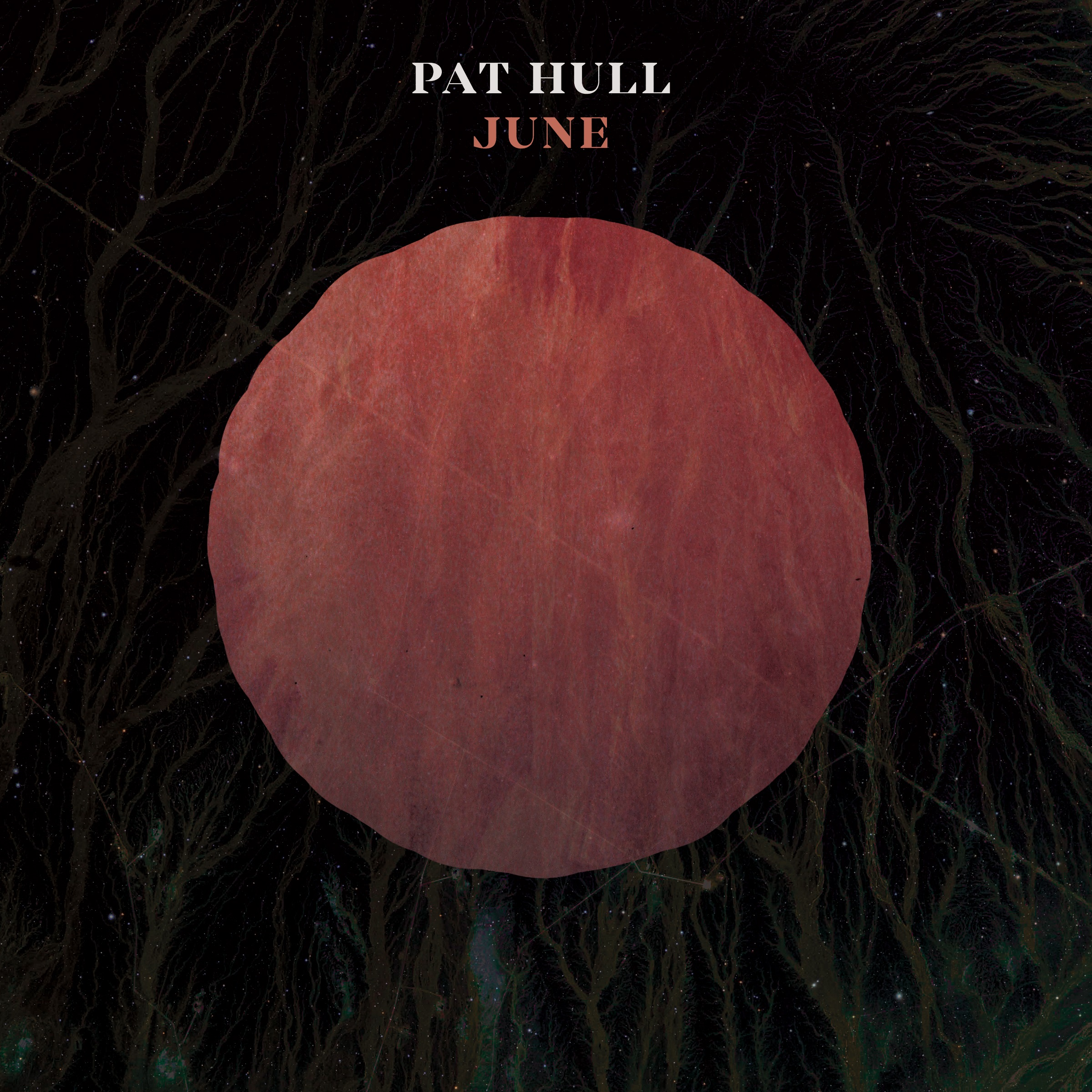 Pat Hull -  June  (2016)
