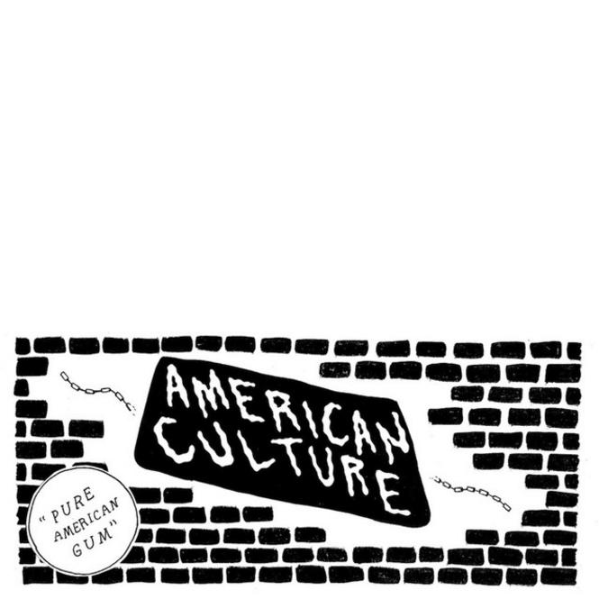 AmericanCulture.png