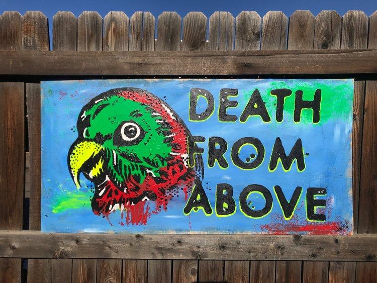 DeathFromAbove.jpeg