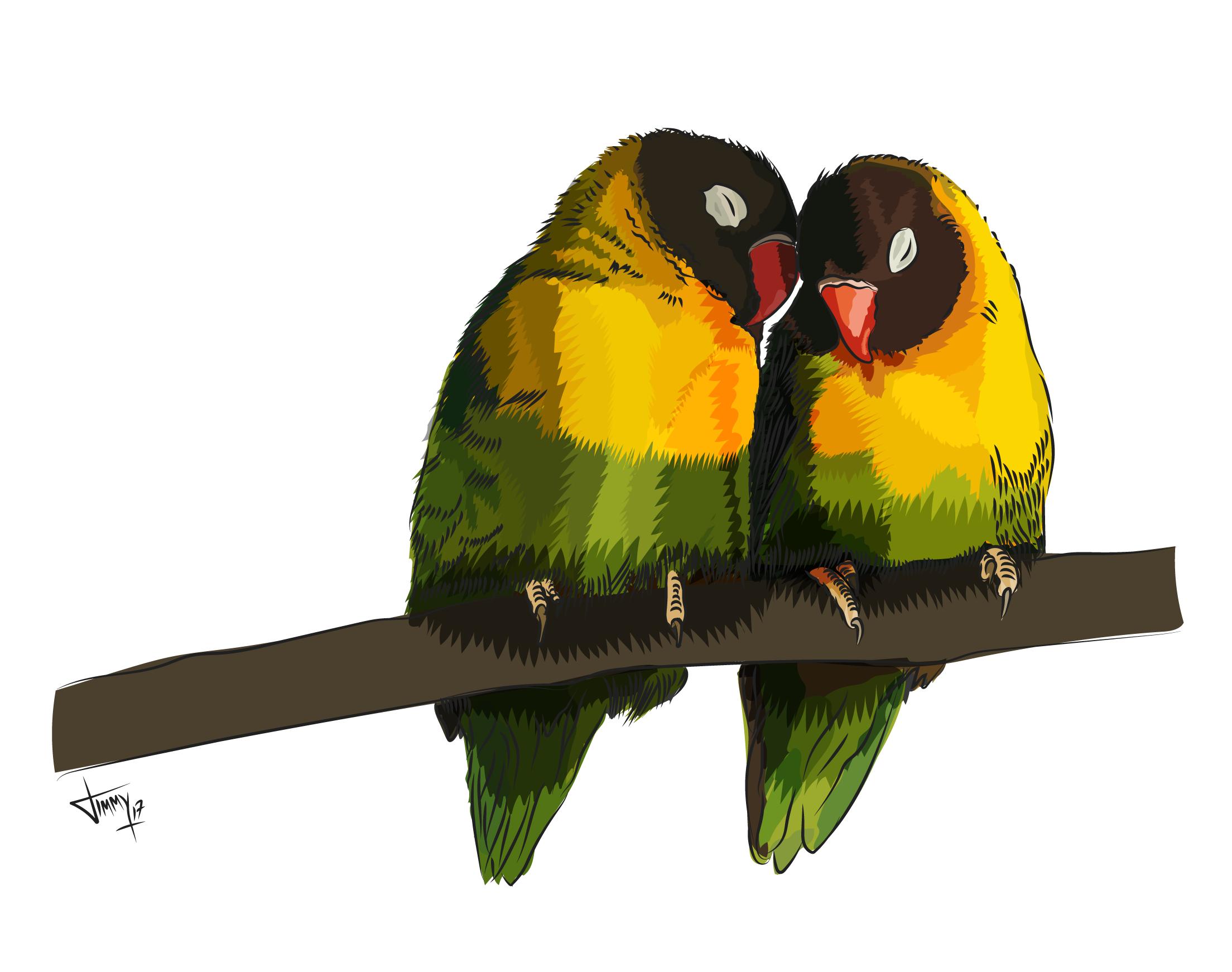Love-Birds-01.png