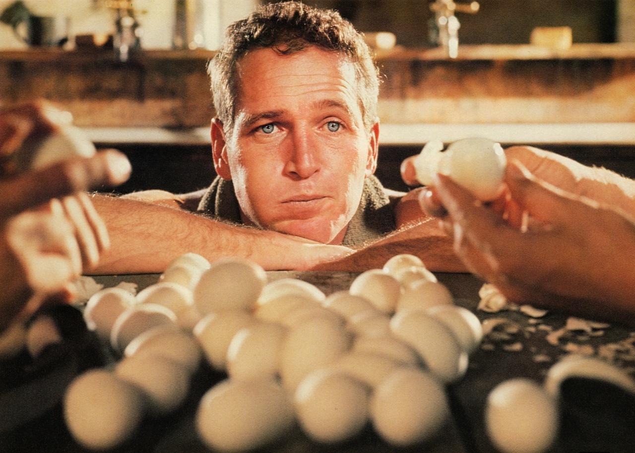 newman eggs.jpg