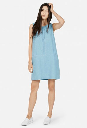 The Sleeveless Dress – Everlane.png