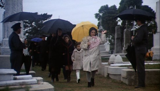 umbrellas-2.png