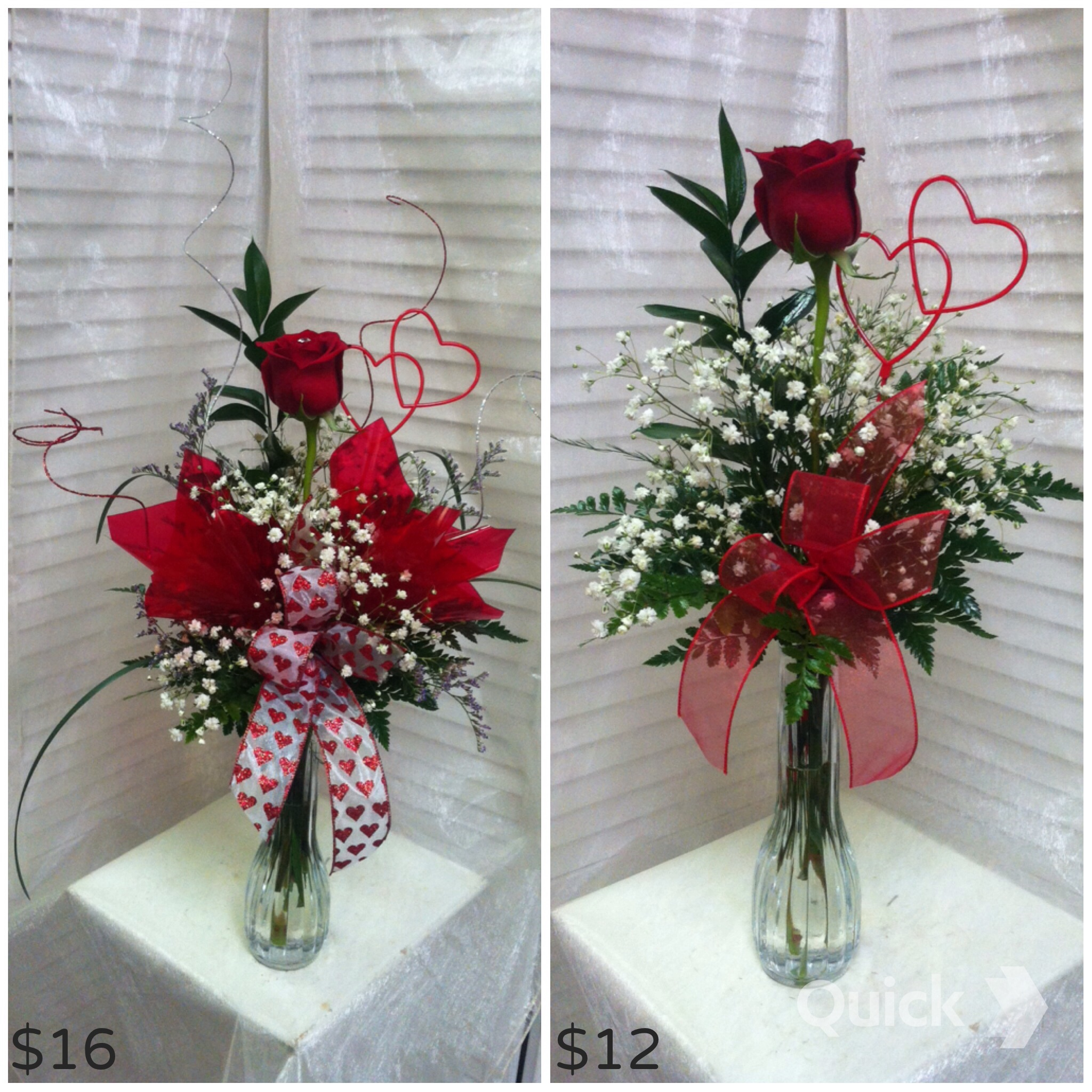 1 Rose, Deluxe and Standard