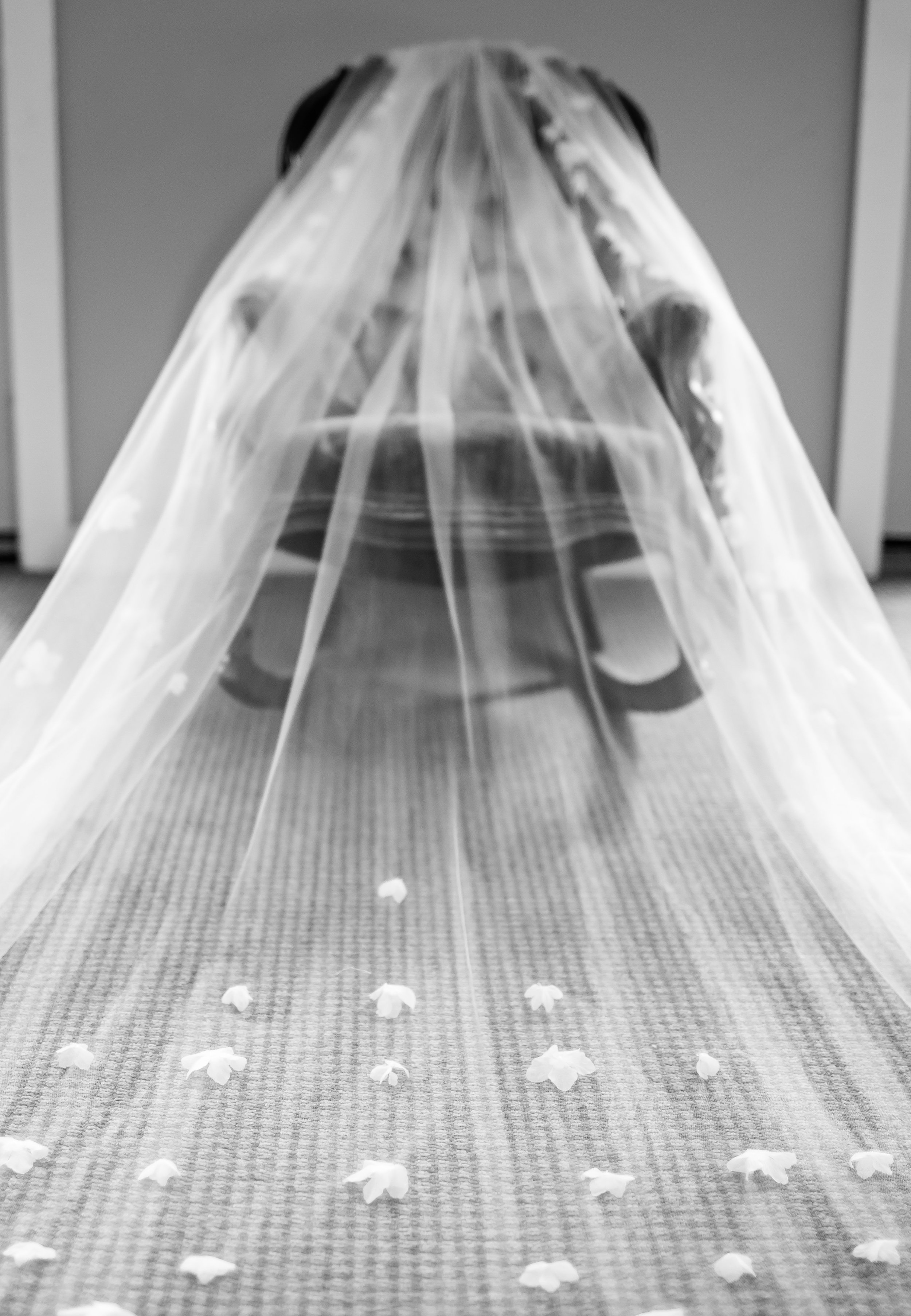 fall wedding (9 of 132).jpg