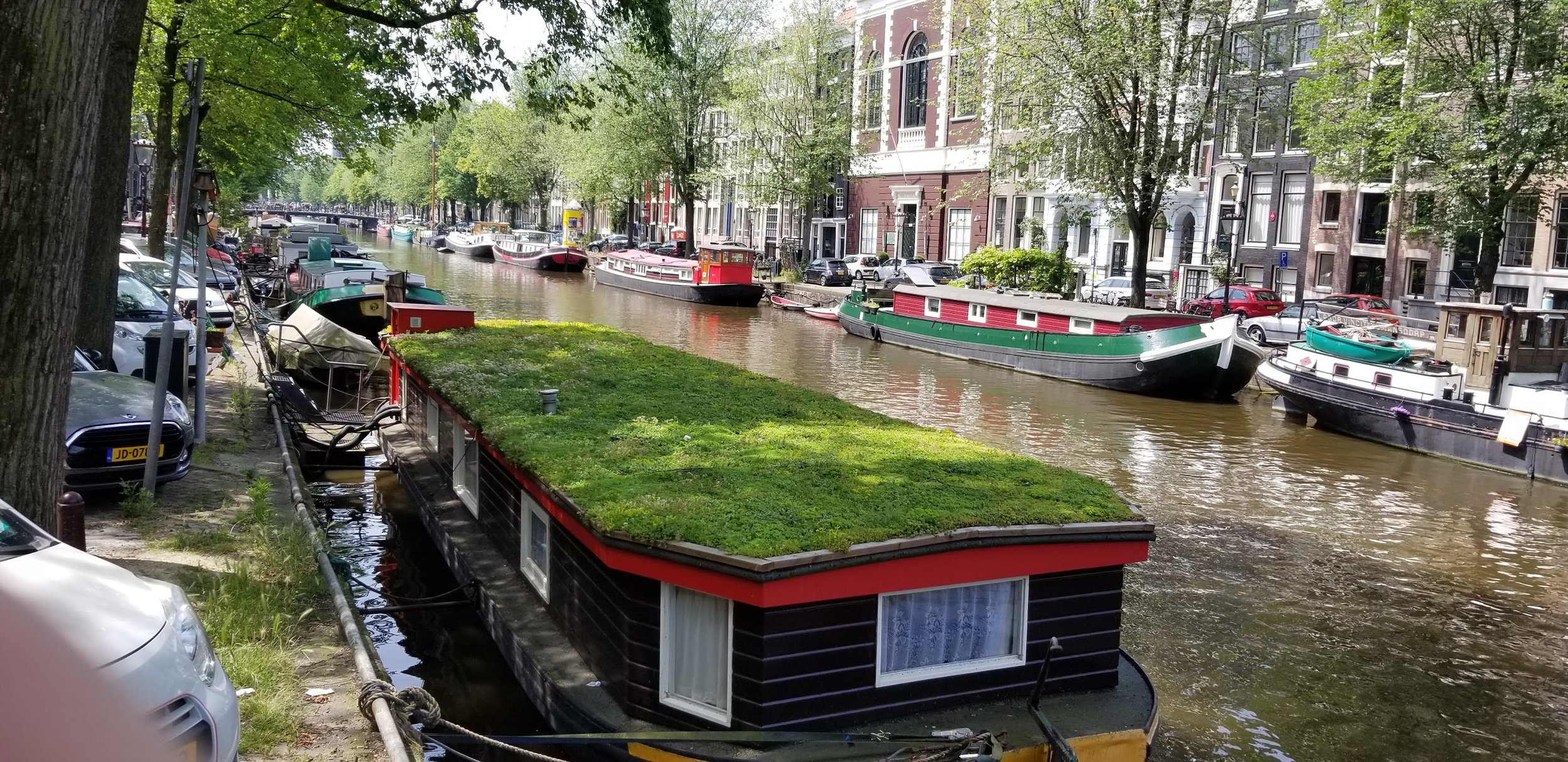 Dutch houseboats with greened roofs.
