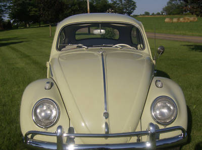 Specializing in polishing the chrome hubcaps and bumpers on their mother's 1963 Beryl Green Volkswagon Beetle.