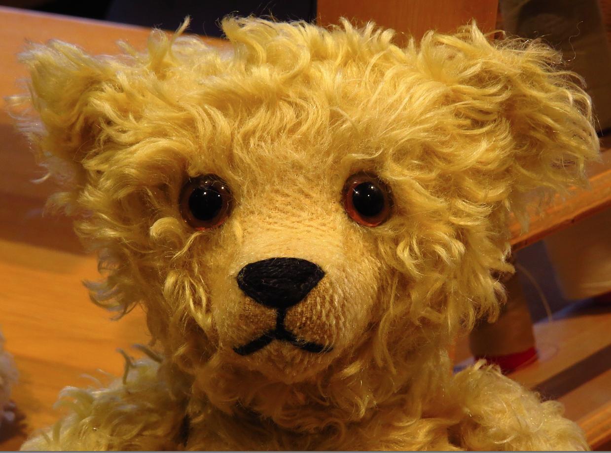 Steiff Bear.png