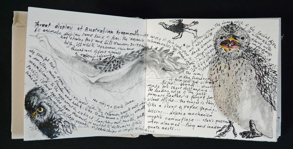 notebook-05-1.jpg