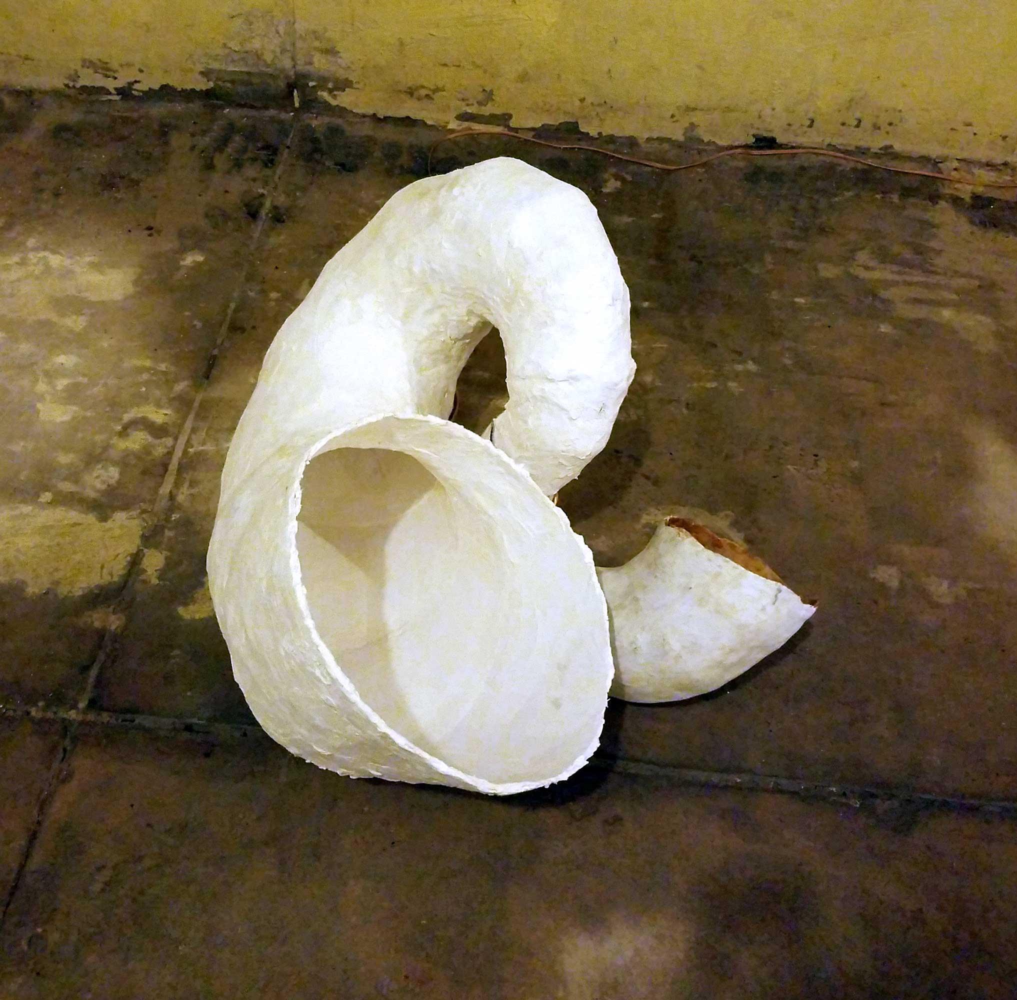 paulapart.omega.shell.plaster.3.5.jpg