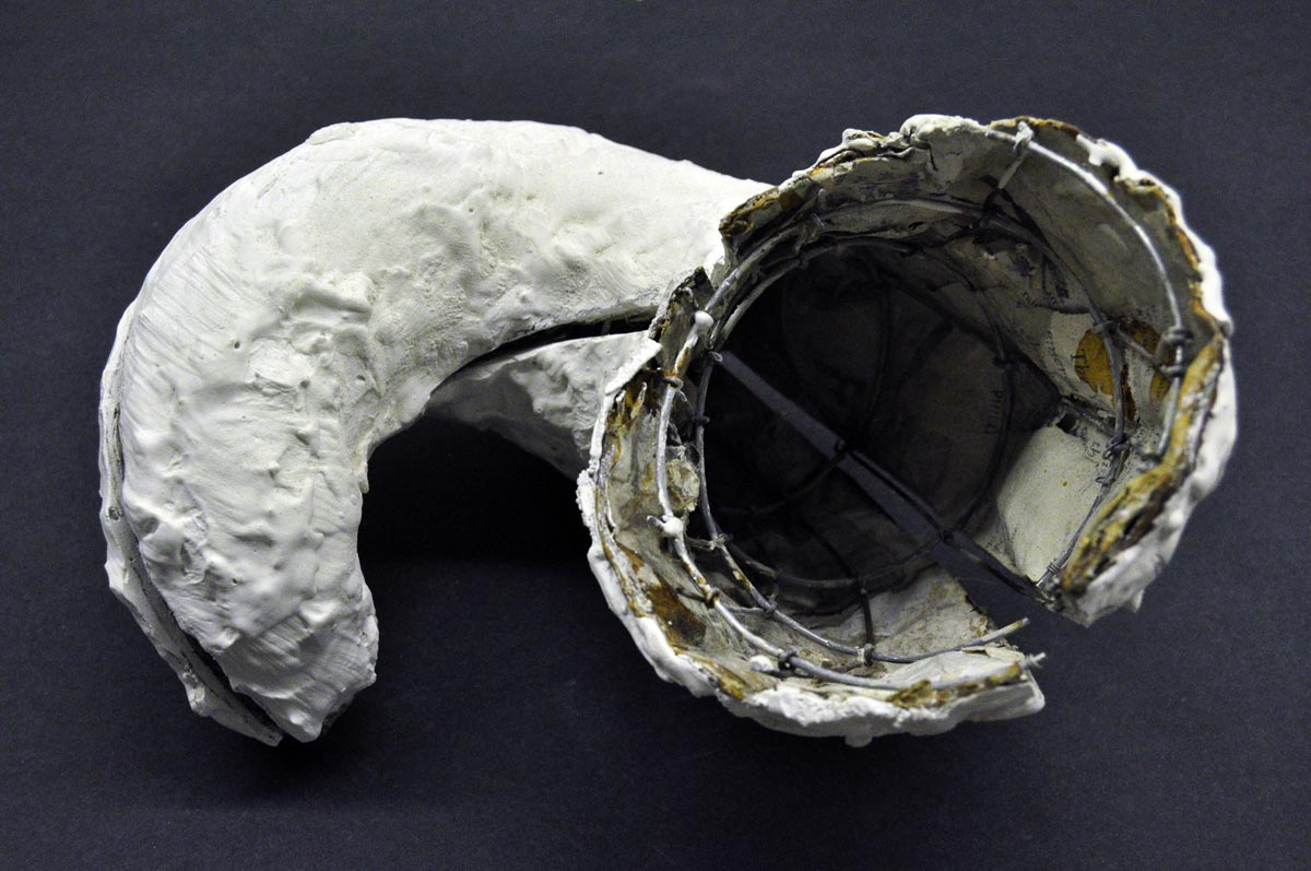 paulapart.shell.shelling.dissect.dissection.sculpture.plaster.steel.wire.paper(5).jpg