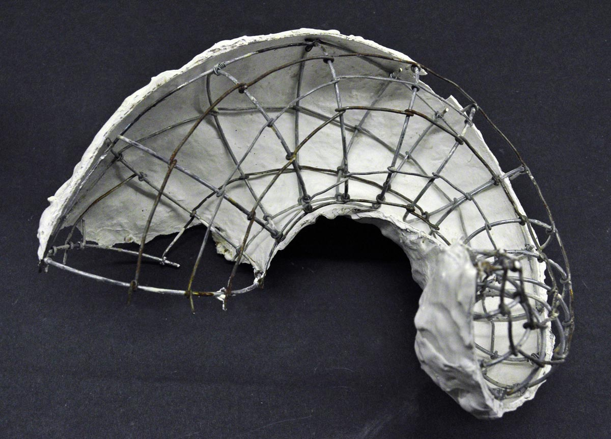 paulapart.shell.shelling.dissect.dissection.sculpture.plaster.steel.wire.paper(15).jpg