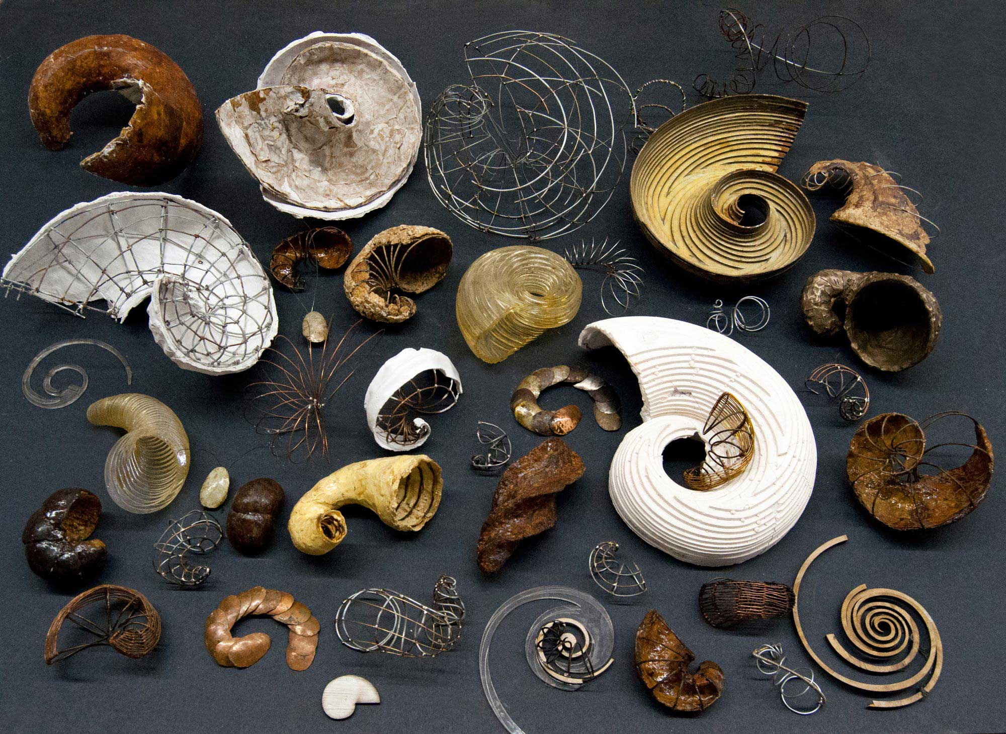 paulapart.shell.collection.shelling