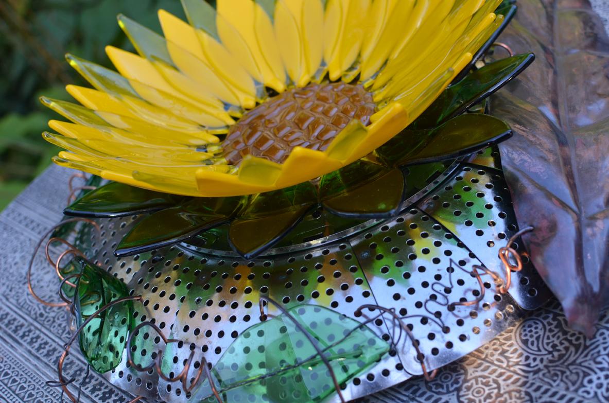 Karlovitch sunflower.jpg