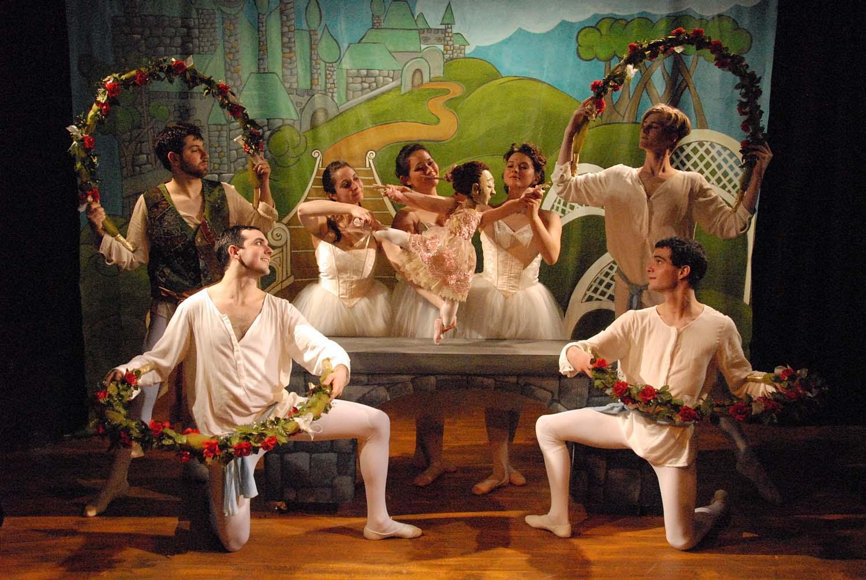 Sleeping Beauty: A Puppet Ballet
