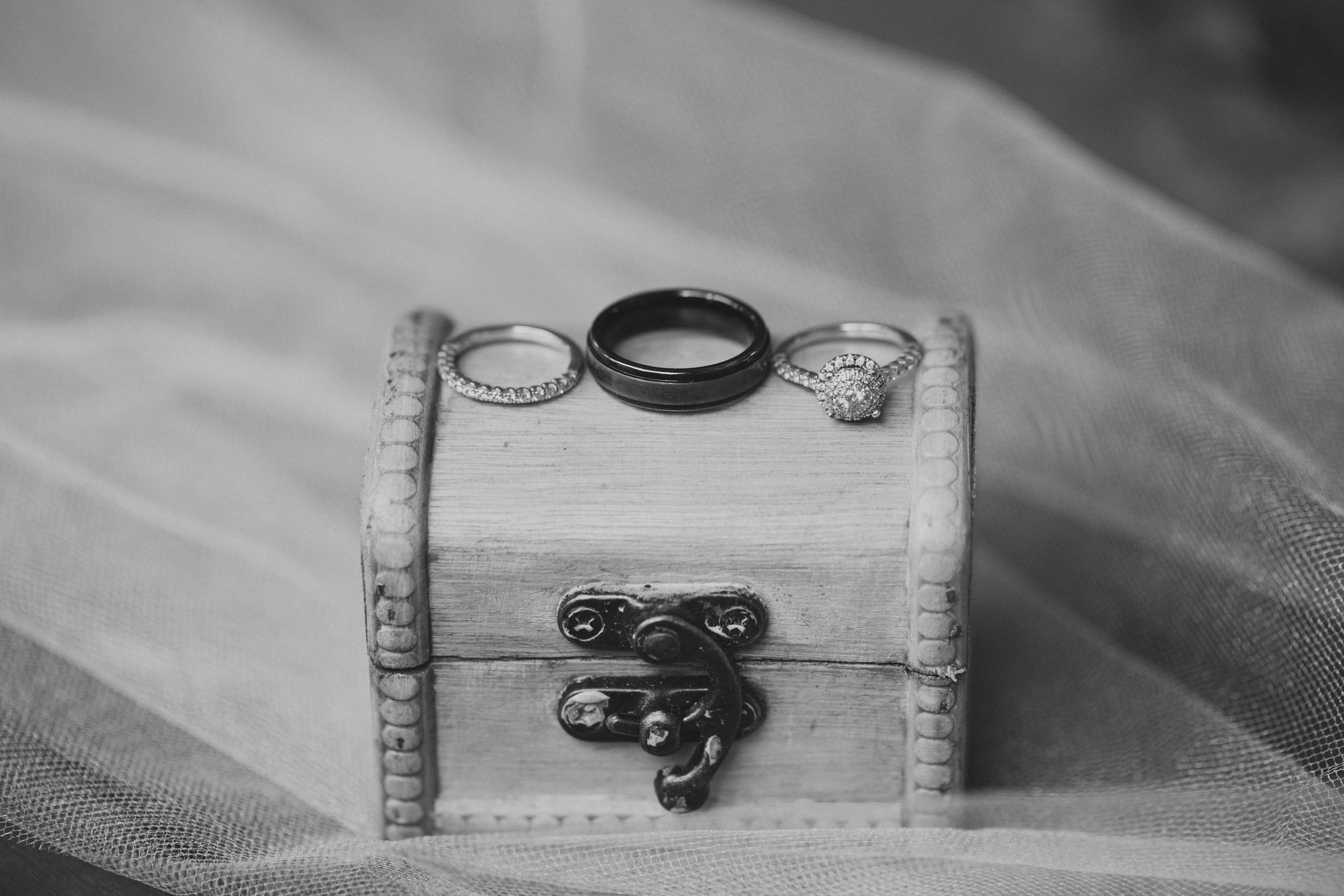 Scranton PA Wedding Photographers_JDP-5946.jpg