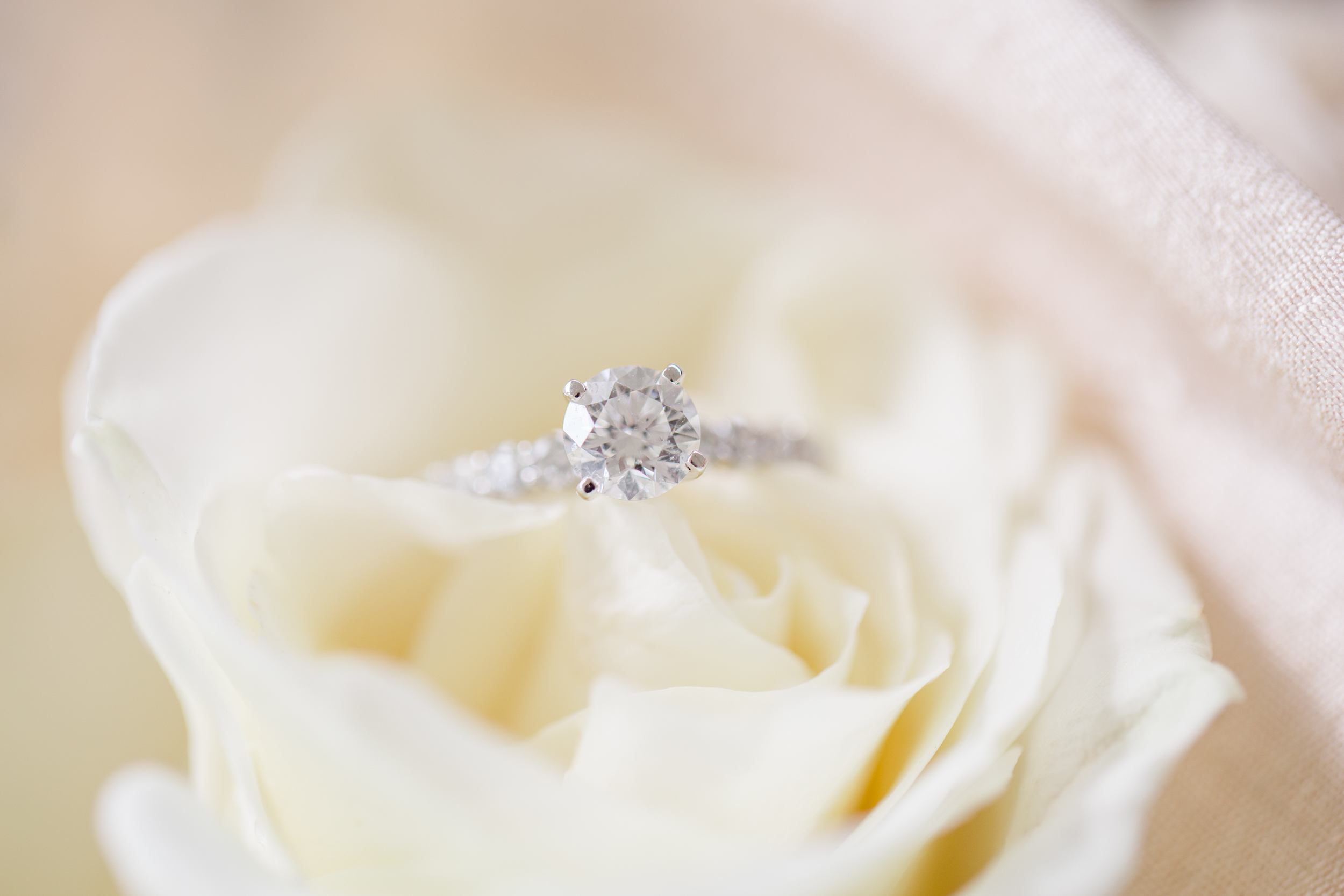 Scranton PA Wedding Photographers_JDP-18.jpg