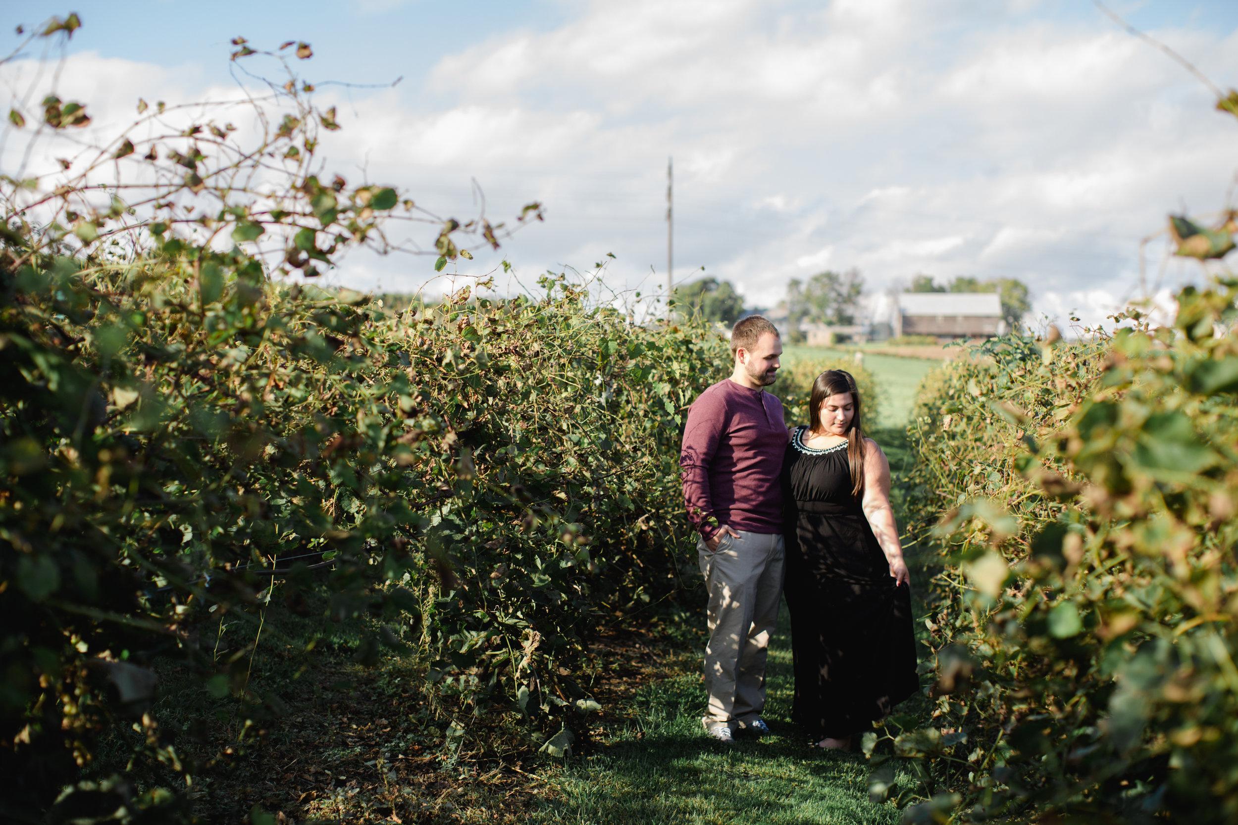 Scranton Pittsburg Hershey PA Wedding Photographers Fall Engagement Session_JDP-7575.jpg