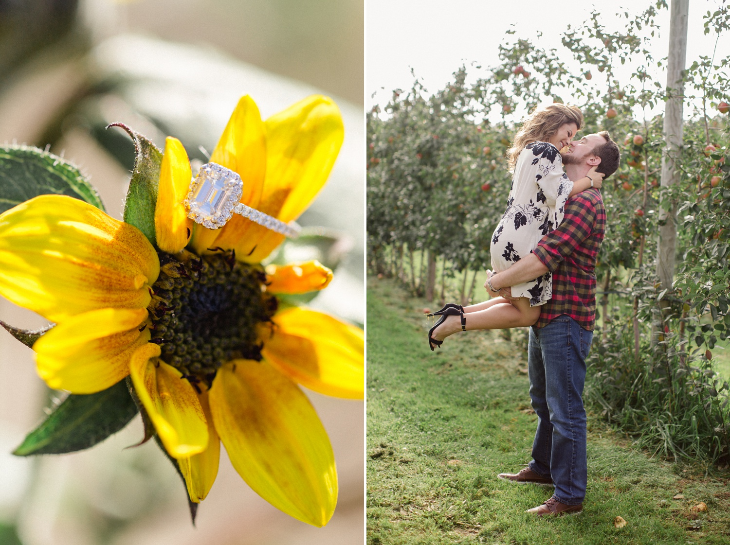 Roba's Apple Orchard Engagement Session_0003.jpg