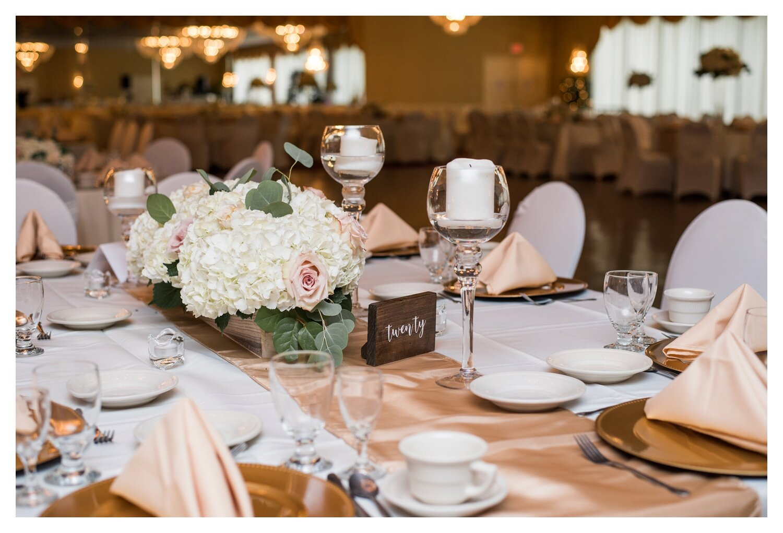 Scranton PA Wedding Photographers Gennettis Wedding_0100.jpg