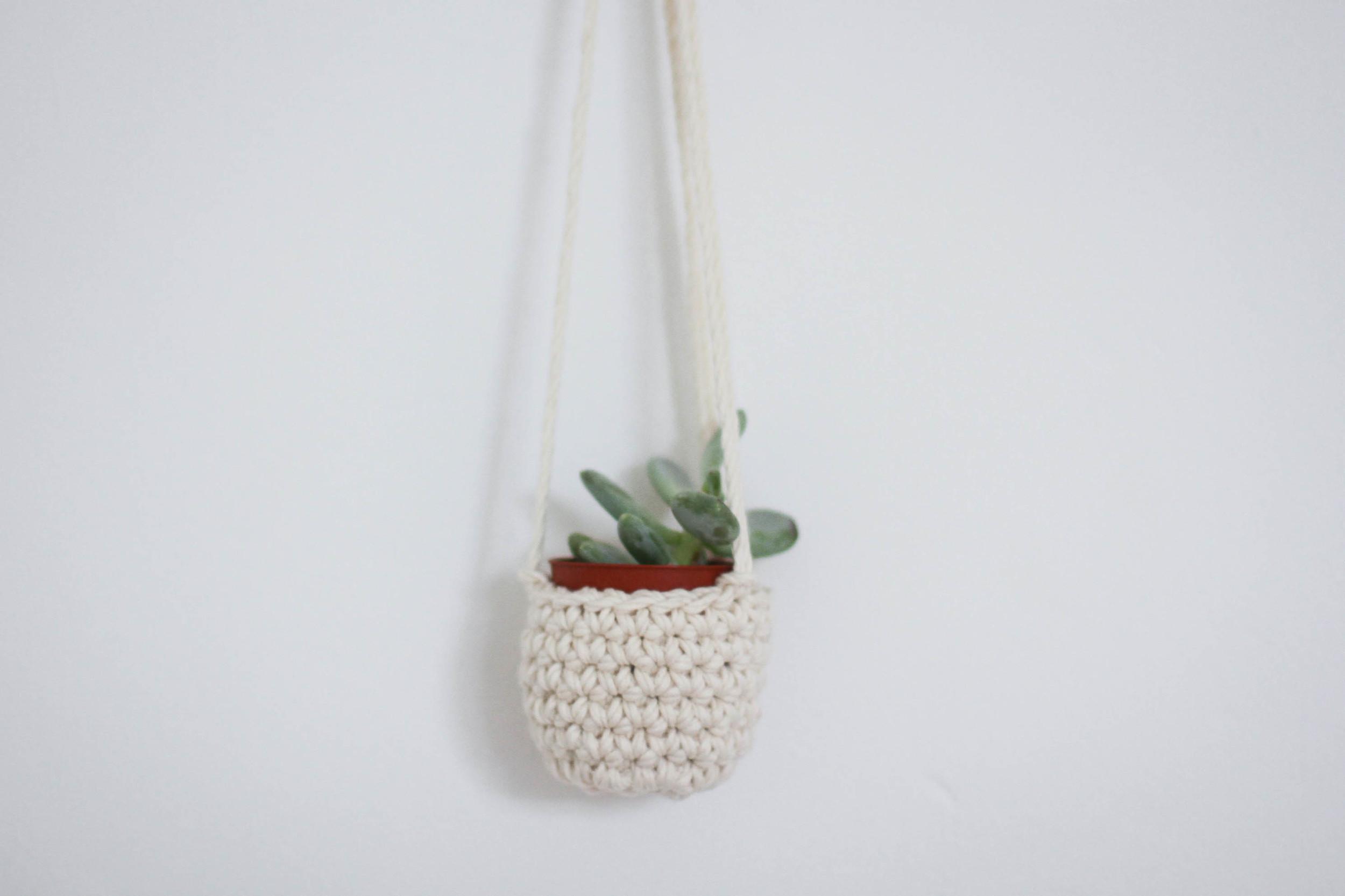 mini succulent plant hanger