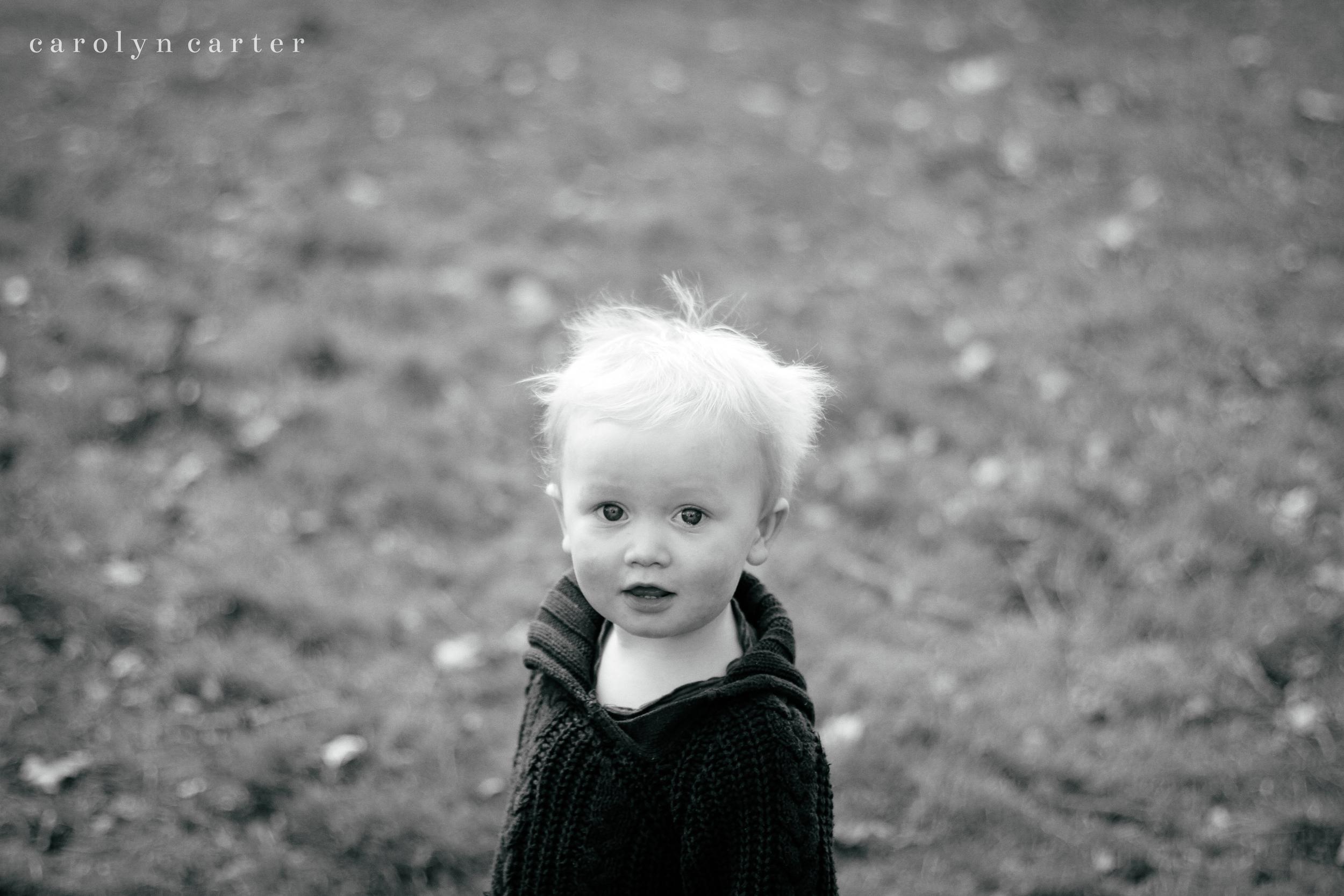 family portraits - carolyn carter