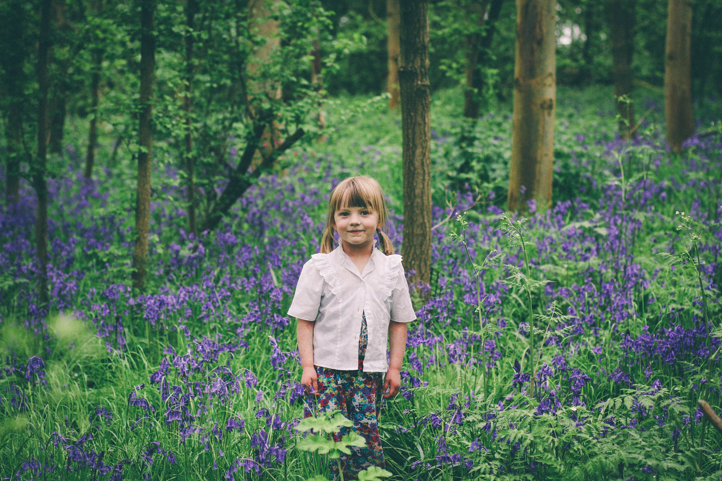 The bluebell wood - carolyn carter photography