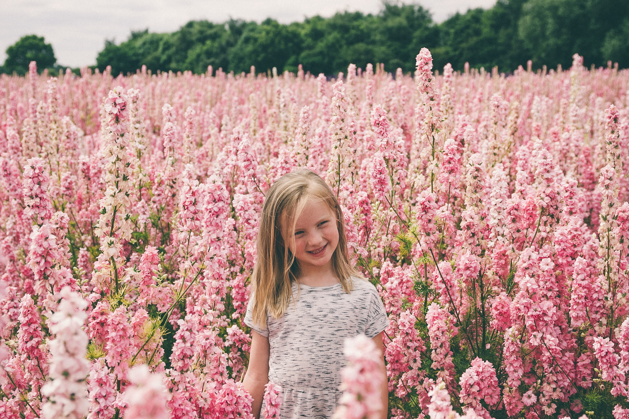 Confetti fields | carolyn carter blog