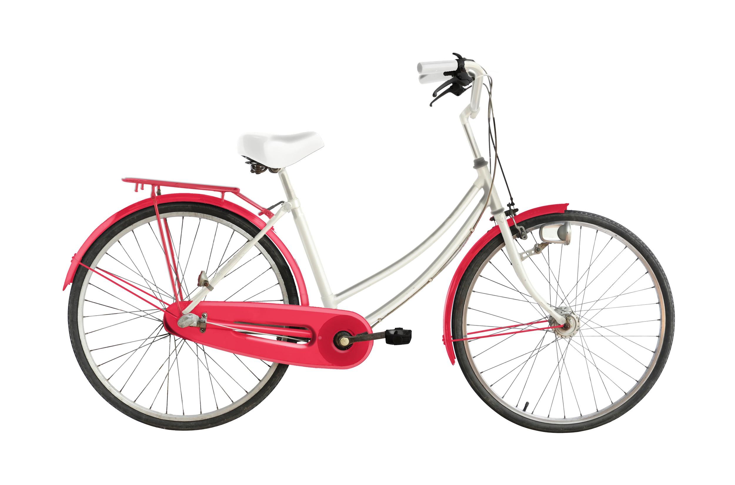 Abin's Custom Designed Bike.jpg