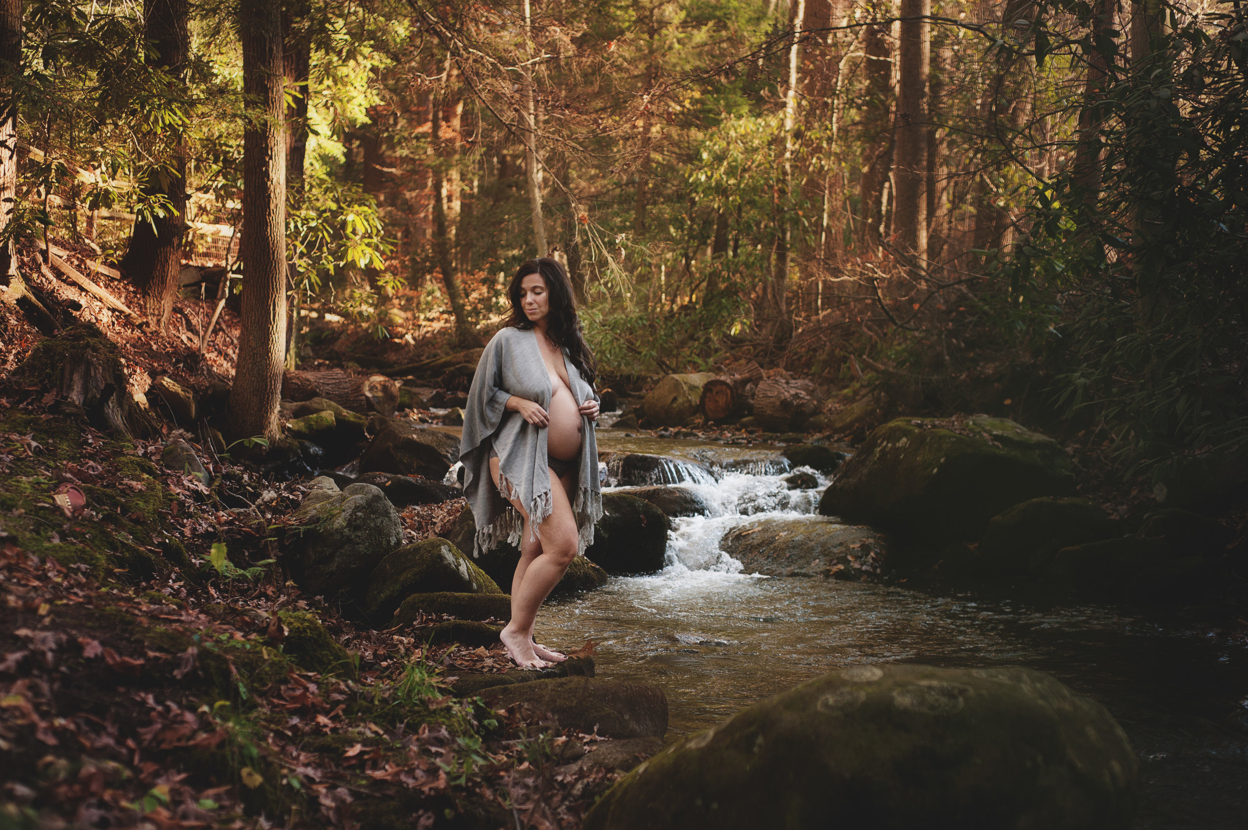 jlaphotos photographer maternity portraits northern virginia pittsburgh pa 000.jpg