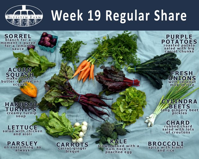 Nineteen weeks in and going strong. High season CSA shares continue for another 3 weeks, and are followed by our 14-week winter CSA program.