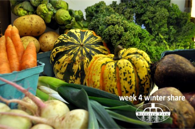 week 4 winter share.jpg