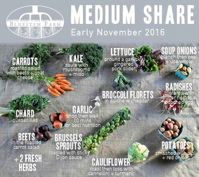 Early Nov-MED.jpg