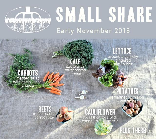 Early Nov-SM.jpg