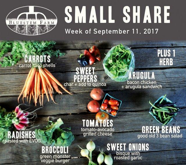 Small Share - Summer Week 14