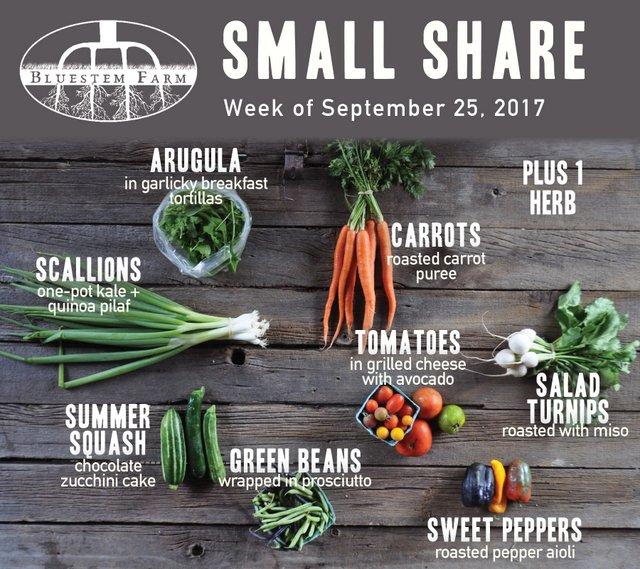 Summer Share - Small - Week 16