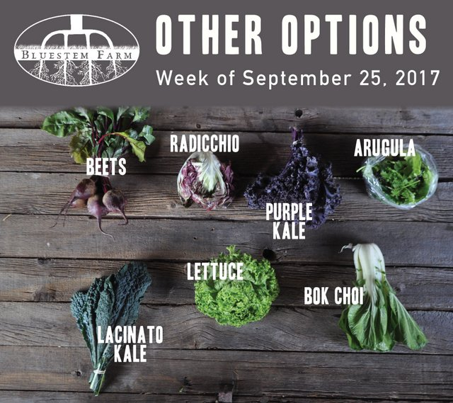 Summer Share - Other Options - Week 16