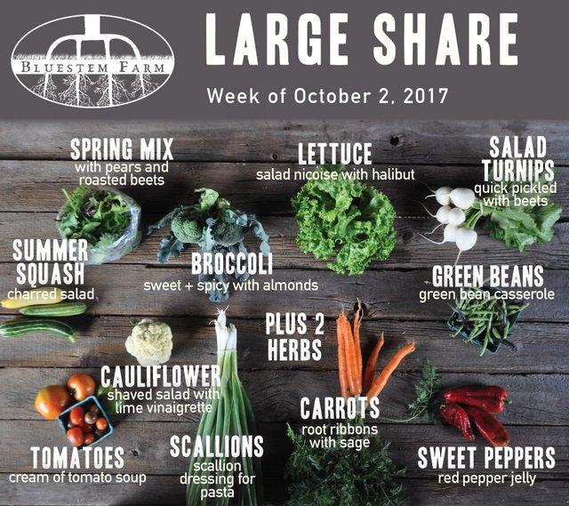 Large Share - Week 17