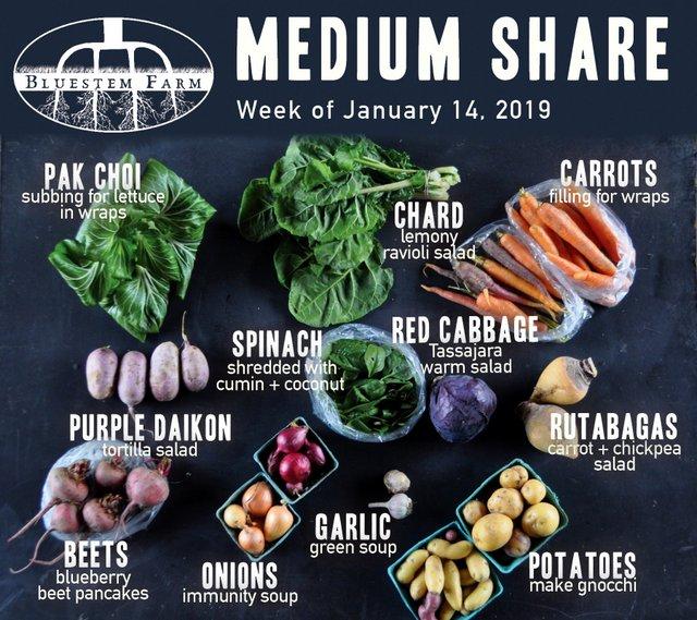 Medium Shares - Mid January