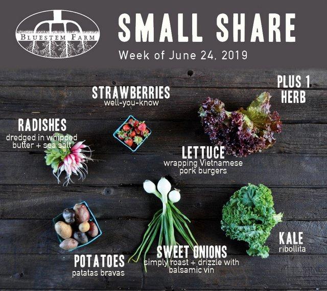 Summer 2019 Week 1 - Small