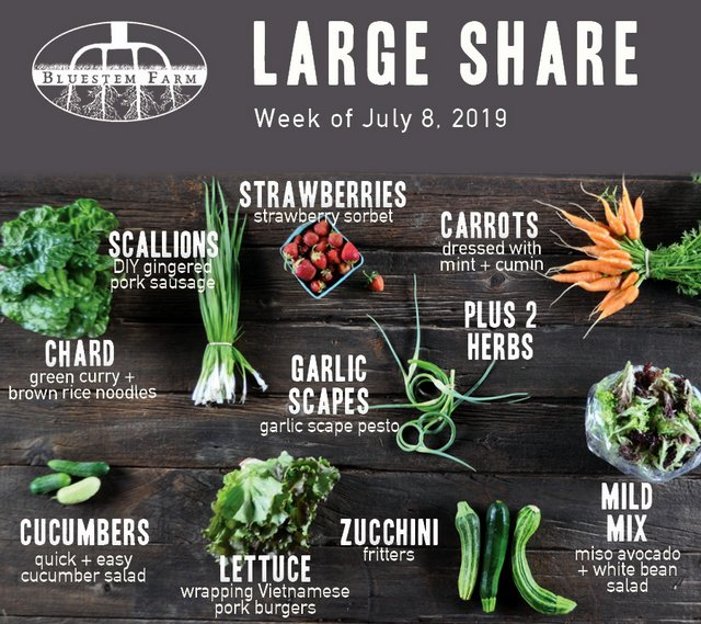 Large Share - Week 3 - 2019