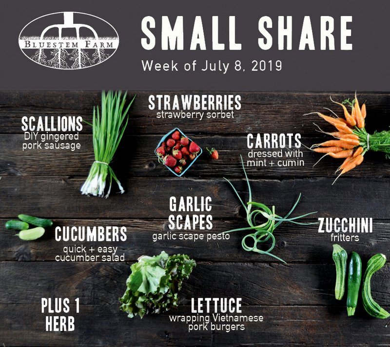 Small Share - Week 3 2019