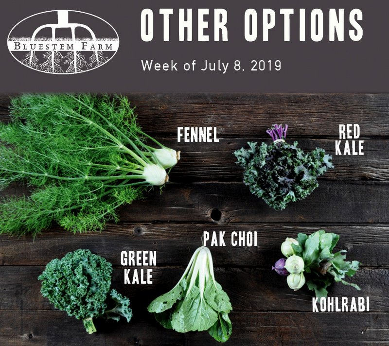Other Options - Week 3 - 2019