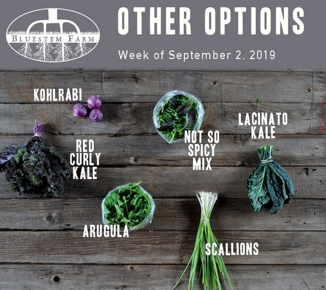 9.2.19 -OTHER.jpg