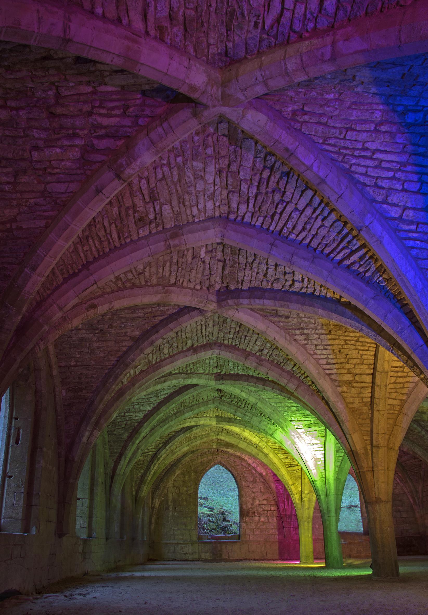 cellarium - vaulted ceiling