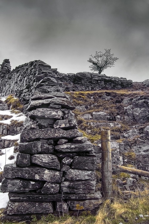 Winskill:  dry stone wall
