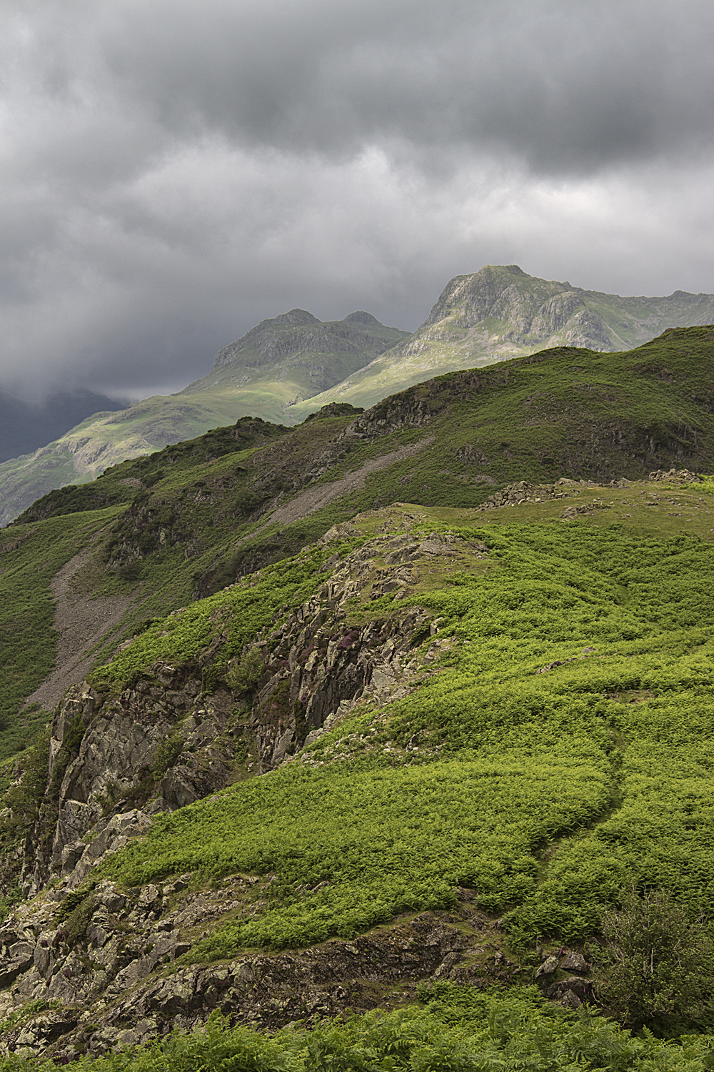 Langdale Pikes from Blea Rigg