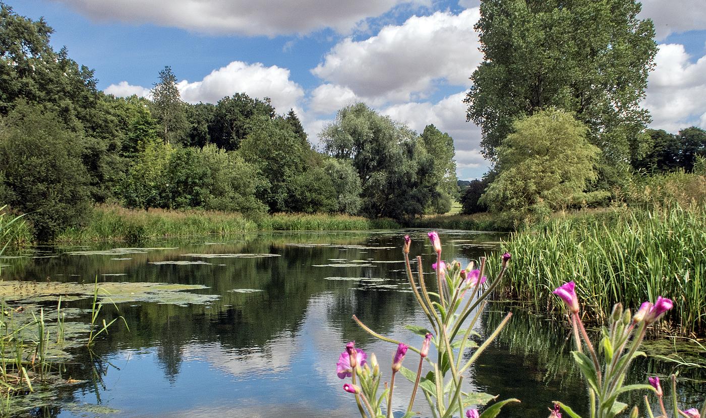 Londesborough Park Lake